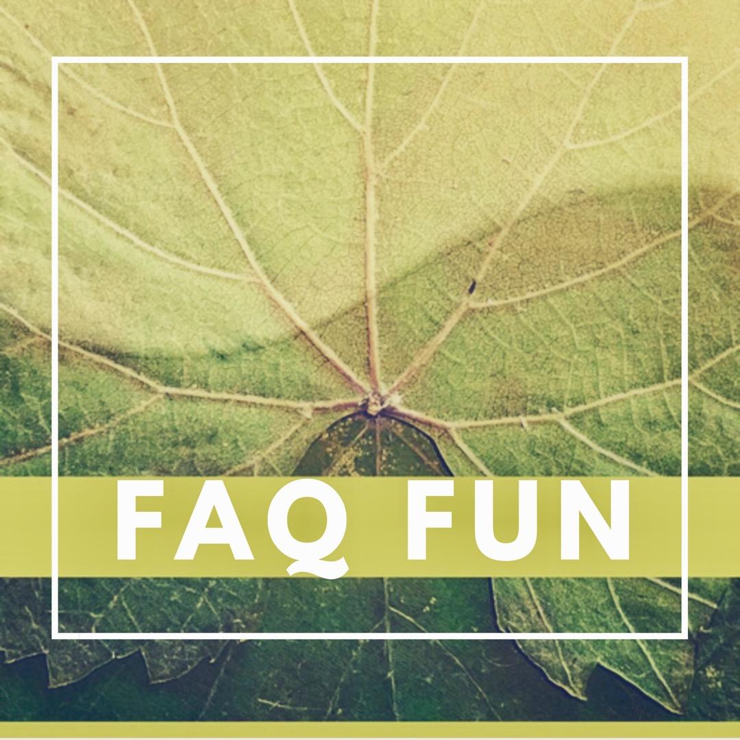 NVR FAQ Fun
